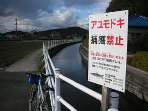 061210takashima1